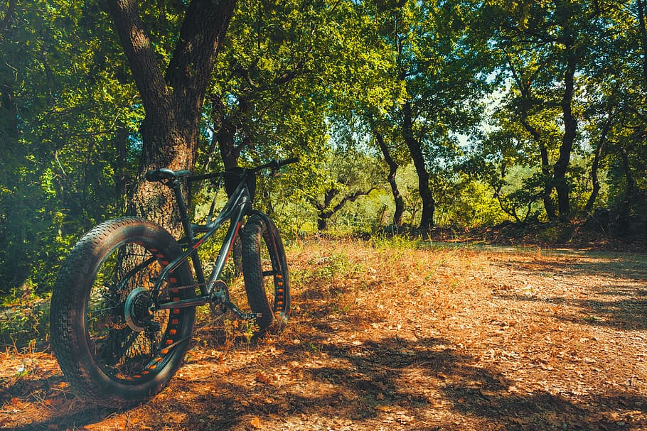 Fat Tire Bike vs Mountain Bike 3